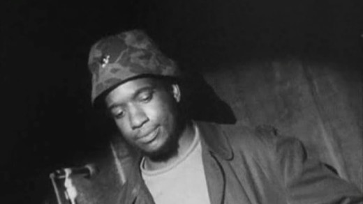 fred hampton Fred hampton (august 30, 1948 – december 4, 1969) was an african-american  activist and revolutionary, chairman of the illinois chapter of the black panther.